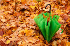Combined green umbrella in autumn park Royalty Free Stock Photos