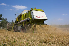 Combined Harvester collecting wheat or barley Royalty Free Stock Photo