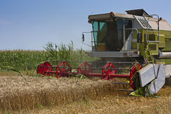 Combined Harvester collecting wheat or barley Royalty Free Stock Photos