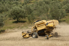 Combined Harvester On Hill. Combined Harvester On A Hilly Wheat Field royalty free stock images