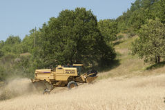 Combined Harvester On Hill. A Combined Harvester on a hill in Italy harvesting wheat royalty free stock photos