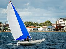 Combined High School Sailing Championships. Children Sailing in High  School  Sailing  Championships Royalty Free Stock Images