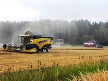 Combineer maait gras op de zomergebied Het oogsten na de zomer Details en close-up stock foto