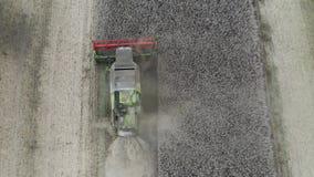 Combiner la récolte du colza vue aérienne par drone clips vidéos