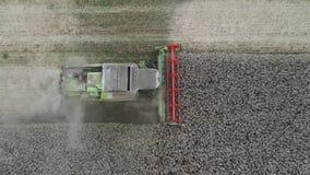 Combiner la récolte du colza - vue aérienne par drone banque de vidéos