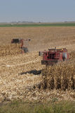Combines Harvest Corn Stock Photography