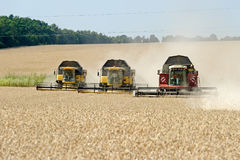 Combines harvester working on a wheat field. Kharkiv Region, Ukraine - July 25, 2017: Combines harvest wheat on a field in sunny summer day in Kharkiv Region Royalty Free Stock Image
