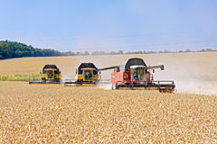 Combines harvesters working on a wheat field. Kharkiv Region, Ukraine - July 25, 2017: Combines harvest wheat on a field in sunny summer day in Kharkiv Region Royalty Free Stock Photos
