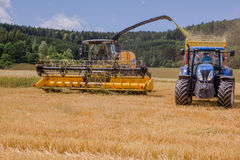 Combines harvesting grains and filling tractor trailer in summer on field. Next to forest Royalty Free Stock Photo