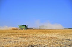 Combines Harvesting in a Wheat Field Royalty Free Stock Photos