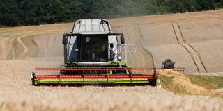 Combines harvesting wheat in a summer day. On a wheat field Royalty Free Stock Photos