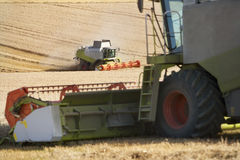 Combines harvesting wheat in sunny, rural field Stock Image