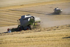 Combines harvesting wheat in sunny, rural field Royalty Free Stock Photography