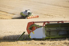 Combines harvesting wheat in sunny, rural field Royalty Free Stock Photo