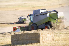 Combines harvesting wheat in sunny, rural field Royalty Free Stock Photos