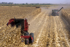 Combines Harvests Corn Stock Images