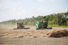 The combines to harvest on the field. Royalty Free Stock Image