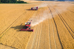 Combines and tractors working on the wheat field Stock Image