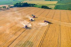 Combines and tractors working on the wheat field Stock Photos