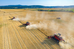 Combines and tractors working on the wheat field Stock Photography