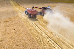 Combines and tractors working on the wheat field Royalty Free Stock Photos