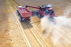 Combines and tractors working on the wheat field Royalty Free Stock Images