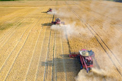 Combines working on the wheat field Royalty Free Stock Photo