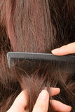 Combing hair Stock Image