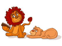 Combing a Lion's Mane. Cartoon lion and lioness with tangled hair Royalty Free Stock Photography