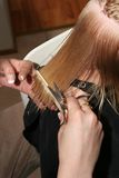 Combing wet hair. Professional hairdresser cutting childs hair, preparing hair by combing it wet Stock Photos