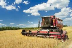 Combini la macchina con la carrozza ad aria condizionata che raccoglie l'avena sul campo dell'azienda agricola Immagini Stock