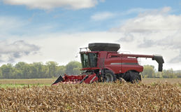 Combining a Corn Field Royalty Free Stock Photography