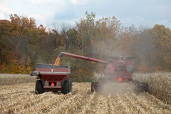 Combining corn field Royalty Free Stock Images