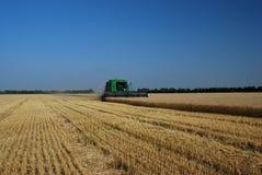 Combining Grain royalty free stock photo