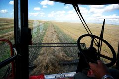 Combining a Grain Field. A farmer drives a combine on a field on the prairies during harvest stock images