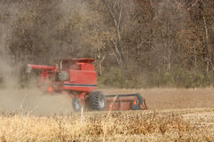 Combining Soybeans Royalty Free Stock Images