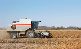 Combining Soybeans Royalty Free Stock Photography