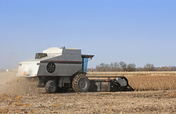 Combining Soybeans Royalty Free Stock Image