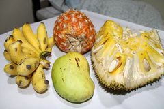 Combo φρούτων στοκ εικόνες με δικαίωμα ελεύθερης χρήσης