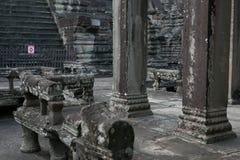 Combodia寺庙密林 免版税库存照片