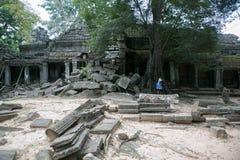 Combodia świątyni dżungle zdjęcie royalty free