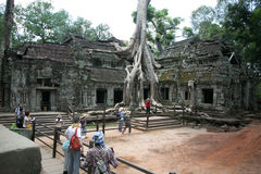 Combodia temples jungles Stock Photography