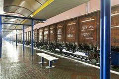 Comboio de mercadorias na estação foto de stock