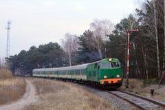 Comboio de passageiros que passa através da floresta imagens de stock royalty free
