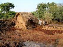 Combustível da almofada do estrume da vaca da Índia com cabana Fotografia de Stock Royalty Free