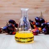 Combustibile alterno, bio- diesel in vetro del laboratorio e FRU rosso della palma fotografie stock