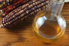 Combustibile dell'etanolo Fotografie Stock Libere da Diritti
