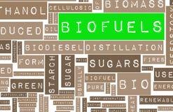 Combustibili biologici Immagine Stock