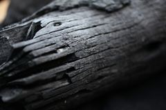 Burned wood. black wood from the fire. Rings on wood. Ash. Wood burnt on coal stock photo