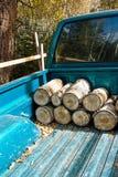 Combustible de substitution Image libre de droits